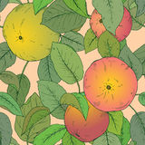 Seamless  pattern with hand drawn apple branches. Stock Images