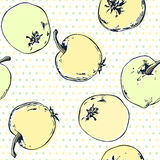 Seamless pattern with  hand drawn apples. Vector illustration. Royalty Free Stock Image