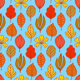 Seamless pattern with hand drawn autumn leafs royalty free illustration
