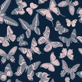 Seamless pattern with hand drawn butterflies stock images