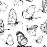 Seamless pattern with hand drawn butterflies stock photo