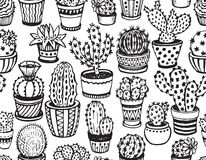 Seamless pattern with hand drawn cactus. Stock Images