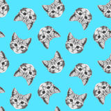 Seamless pattern with hand-drawn Cat. Stock Photos