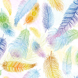Seamless pattern. Hand drawn colored bird feathers. Boho style. Royalty Free Stock Photography