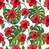Seamless pattern with hand drawn and colored sketch of hibiscus flowers and monstera leaves. Elements isolated on white background. Vector  illustration stock illustration