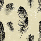 Seamless pattern with hand drawn feathers Stock Photo