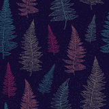 Seamless pattern with hand drawn fern leaves Stock Photography