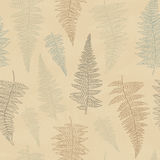 Seamless pattern with hand drawn fern leaves Stock Image