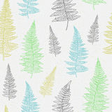 Seamless pattern with hand drawn fern leaves Stock Photo