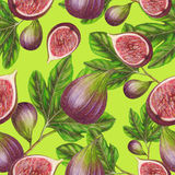Seamless pattern of hand drawn figs Royalty Free Stock Photos