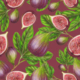 Seamless pattern of hand drawn figs Stock Photo