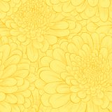 Seamless pattern with hand-drawn flowers. Royalty Free Stock Photography