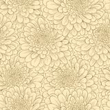 Seamless pattern with hand-drawn flowers in vintag Stock Photography