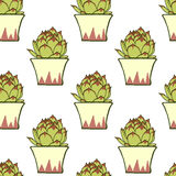Seamless pattern with hand drawn green cactus Royalty Free Stock Images