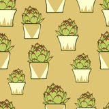 Seamless pattern with hand drawn green cactus Royalty Free Stock Photography