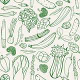 Seamless pattern with hand drawn green vegetables on beige background. Doodle pattern vegetables. Seamless pattern with hand drawn green vegetables on beige Stock Images