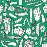 Seamless pattern with hand drawn green vegetables on green background. Doodle pattern vegetables. Seamless pattern with hand drawn green vegetables on green Stock Photography