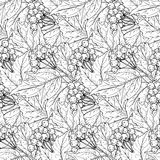 Seamless  pattern with hand drawn guelder rose branches Royalty Free Stock Images