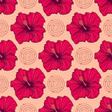 Seamless pattern with hand drawn hibiscus flowers. Vector illustration of seamless pattern with hand drawn hibiscus flowers Royalty Free Stock Photos