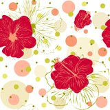 Seamless Pattern with Hand Drawn Hibiscus Flowers. Vector illustration of seamless pattern with hand drawn red hibiscus flowers Stock Photo