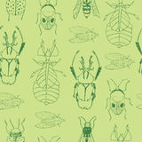 Seamless  pattern with hand drawn insects. Stock Photos