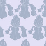 Seamless pattern with a hand drawn iris. Seamless pattern with a hand drawn purple iris Royalty Free Illustration