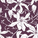 Seamless pattern with hand drawn magnolia flower. Vector illustration. stock illustration