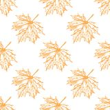 Seamless pattern with hand drawn maple leaves. Vintage background stock illustration
