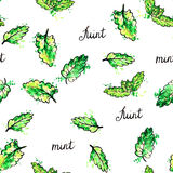 Seamless pattern with hand drawn mint leaves Stock Images