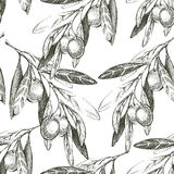 Seamless pattern with hand drawn olives Royalty Free Stock Image