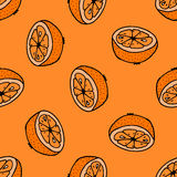Seamless pattern with hand drawn oranges. Stock Image