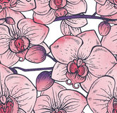 Seamless pattern with hand drawn orchid flowers Stock Photography