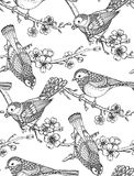 Seamless pattern with  hand drawn ornate birds on sakura flower Stock Photo