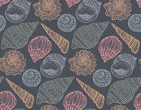 Seamless pattern with hand drawn ornate seashells. Royalty Free Stock Images