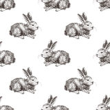 Seamless pattern with hand drawn rabbit Stock Images