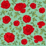 Seamless pattern of hand drawn red roses vector illustration