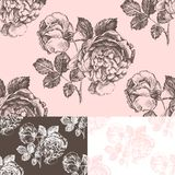 Seamless pattern with hand drawn roses Stock Images