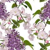 Seamless pattern with hand drawn sakura, violet lilac flowers with green leaves. vector illustration