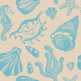 Seamless pattern with hand drawn seashells. Marine background.. Vector vintage texture with seashells, coral, sea horse, starfish Royalty Free Stock Image