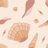 Seamless pattern with hand drawn shells Royalty Free Stock Images
