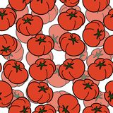 Seamless pattern with hand drawn tomatoes on white backdrop. royalty free illustration