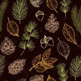 Seamless pattern. Hand drawn vector illustrations - Forest Autum Stock Photos