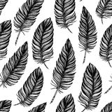 Seamless pattern. Hand drawn vector vintage illustration - Feath Royalty Free Stock Photography