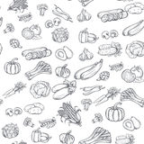 Seamless pattern with hand drawn vegetables Stock Images
