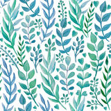 Seamless pattern with hand drawn watercolor herbs. Stock Image