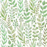 Seamless pattern with hand drawn watercolor herbs. Stock Photography