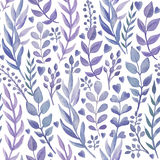 Seamless pattern with hand drawn watercolor herbs. Royalty Free Stock Photo