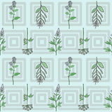 Seamless pattern with hand drawn watercolour herbs Stock Photos