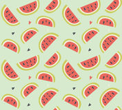 Seamless pattern with hand drawn watermelon fruit Stock Image