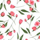 Seamless pattern of hand painted crimson flowers vector illustration